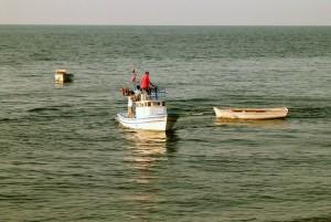 Doğu Karadeniz notları